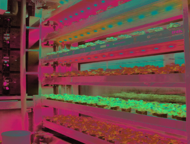 vertical-farm-expo-c