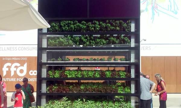 vertical-farm-expo-d