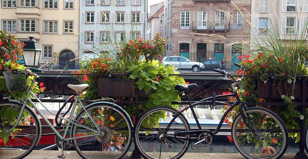 caption: Strasburgo, foto di ilovebutter