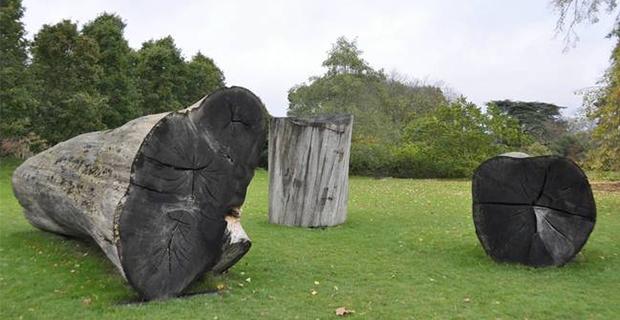 alberi-sculture-g