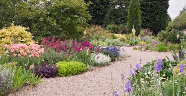 Come realizzare un giardino senz 39 acqua dry gardens - Realizzare un giardino ...
