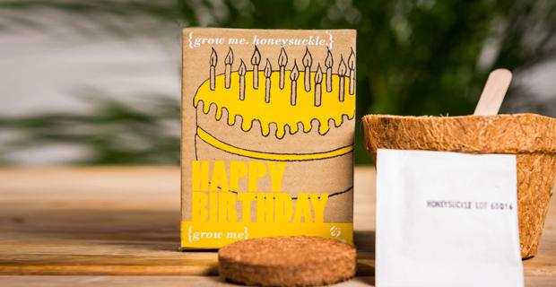 Idee regalo per coltivare piccole piante in casa - Cerco piante da giardino in regalo ...