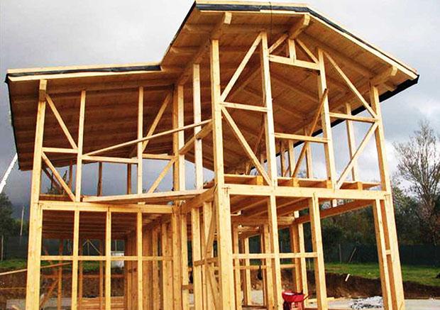 scegliere-legno-costruzioni-e