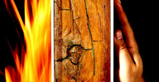 scegliere-legno-costruzioni-f