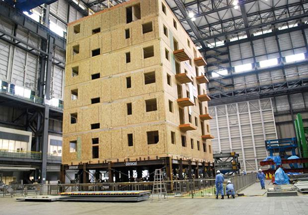 scegliere-legno-costruzioni-g