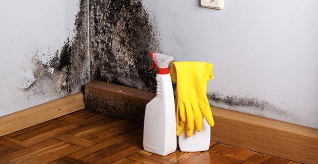 I prodotti edili contro umidità e muffa