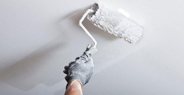 Scegliere la pittura antimuffa naturale per la casa