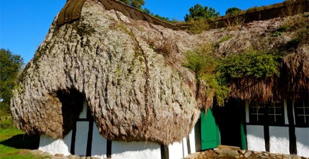 Le case con i tetti di alghe nell 39 architettura vernacolare for Architettura moderna case