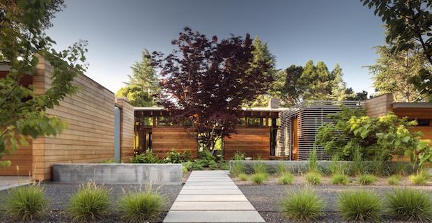 Los Altos Residence costruita intorno ad un albero di acero giapponese