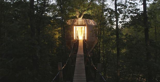 la casa sull albero costruita come un nido origin tree house di atelier lavit. Black Bedroom Furniture Sets. Home Design Ideas