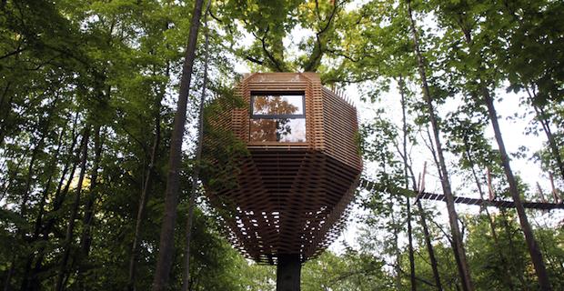 Origin Tree House dell'AtelierLavit è una casa sull'albero a forma di nido in legno.
