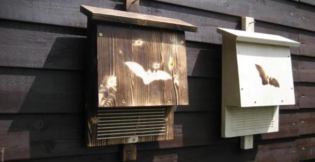La casa per pipistrelli Bat-Box