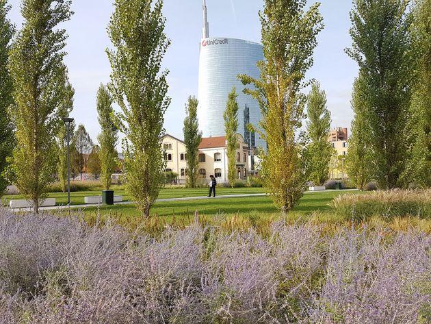 Biblioteca degli alberi a milano un giardino botanico for Giardino botanico milano