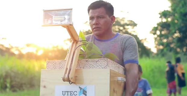 Plantalampara è la lampada che funziona con energia elettrica dalla fotosintesi delle piante.