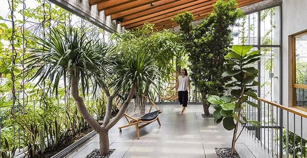 Vo Trong Nghia e il suo progetto House for tree delle case per alberi.