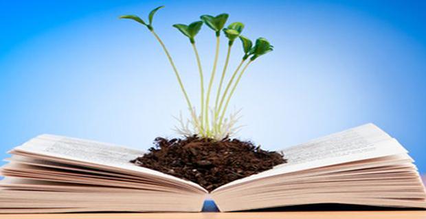 La normativa sull'ambiente e le procedure di valutazione della legislazione.